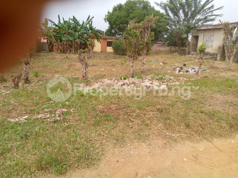 Industrial Land for sale Facing Main Road Ring Rd Ibadan Oyo - 0
