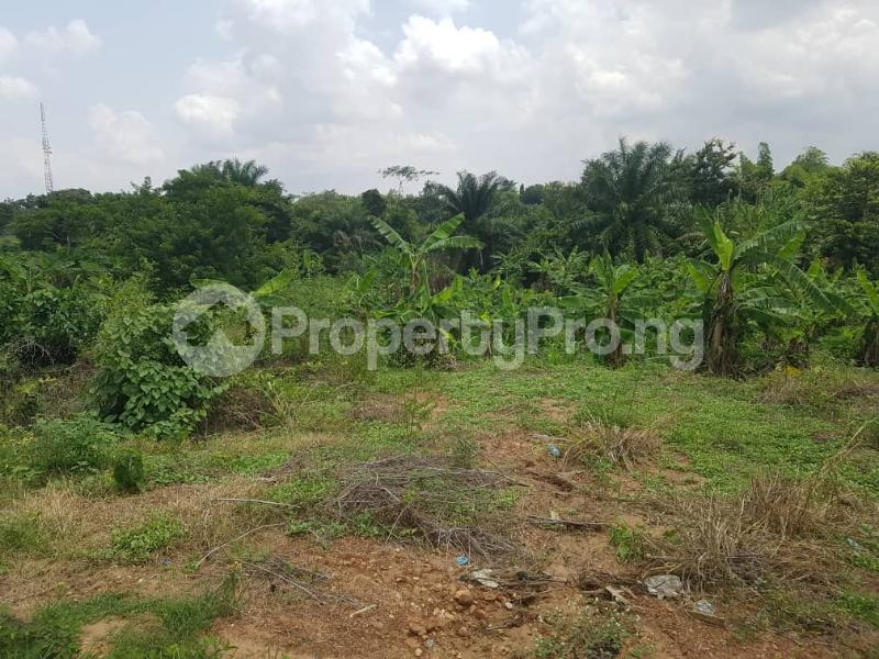 Mixed   Use Land for sale   Egbeda Oyo - 0