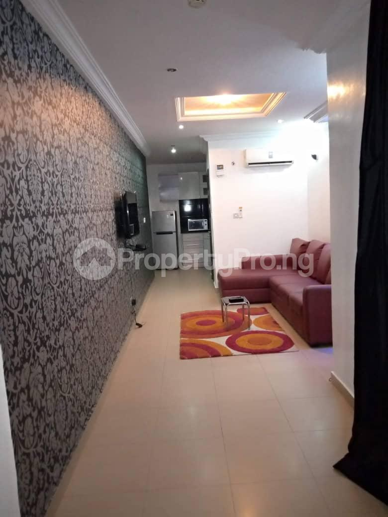 1 bedroom mini flat  Flat / Apartment for shortlet  off Ogunyemi street opposite palace way ONIRU Victoria Island Lagos - 8