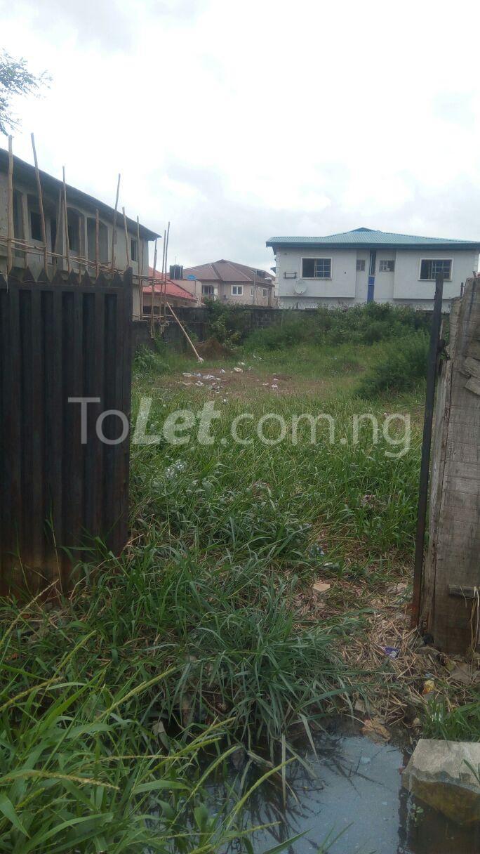Land for sale Seaside Estate Ado Ajah Lagos - 2