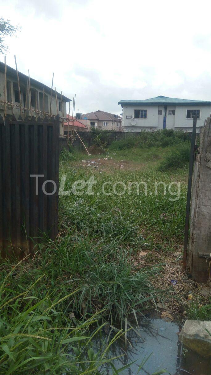 Land for sale Seaside Estate Ado Ajah Lagos - 4