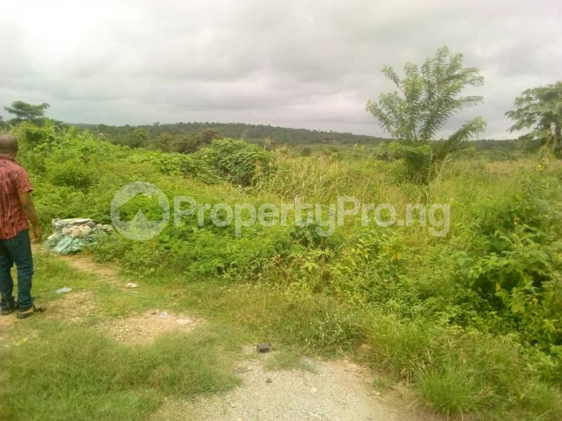 Commercial Land Land for sale Ibadan to Lagos express way  Ibadan Oyo - 4