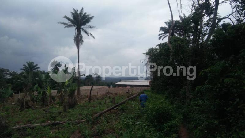Land for sale Moniya Moniya Ibadan Oyo - 0