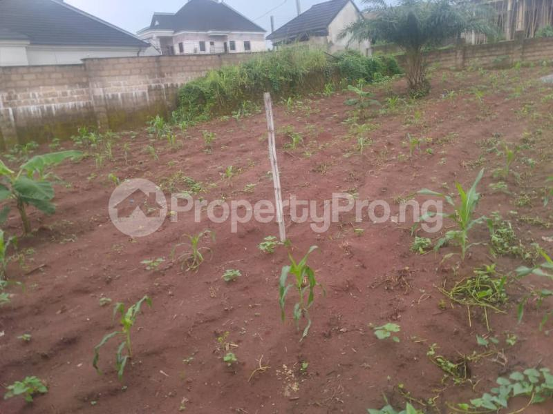 Serviced Residential Land Land for sale Airport Road  Oredo Edo - 4