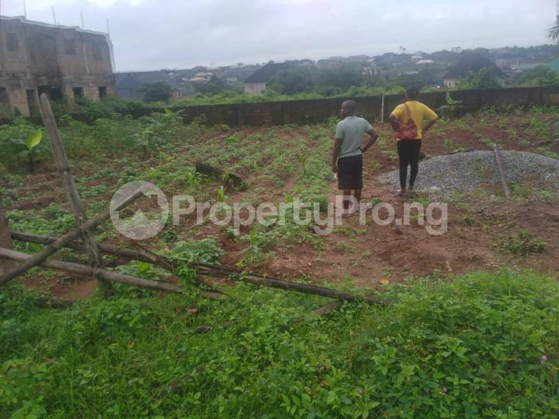 Serviced Residential Land Land for sale Airport Road  Oredo Edo - 5