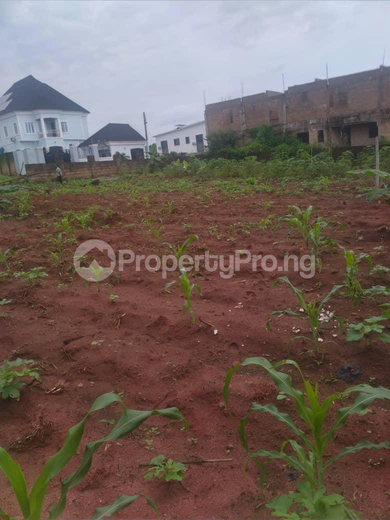 Serviced Residential Land Land for sale Airport Road  Oredo Edo - 10