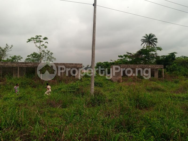 Mixed   Use Land for sale Along Sapele Road Bypass, Opposite Eagle Gas Plant, 500meter Away From Captain Hoss Tomato Company Oredo Edo - 3