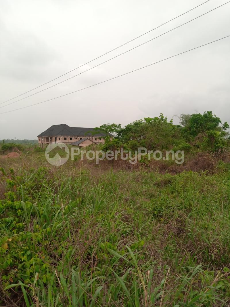 Mixed   Use Land for sale Along Sapele Road Bypass, Opposite Eagle Gas Plant, 500meter Away From Captain Hoss Tomato Company Oredo Edo - 7