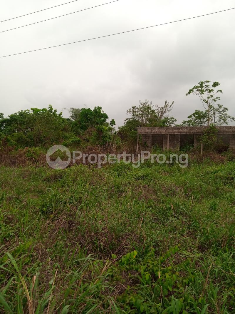 Mixed   Use Land for sale Along Sapele Road Bypass, Opposite Eagle Gas Plant, 500meter Away From Captain Hoss Tomato Company Oredo Edo - 0