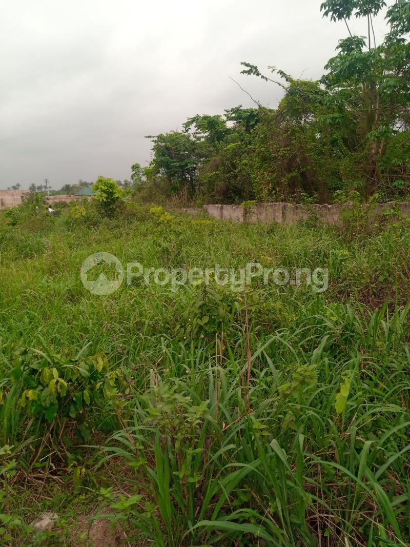 Mixed   Use Land for sale Along Sapele Road Bypass, Opposite Eagle Gas Plant, 500meter Away From Captain Hoss Tomato Company Oredo Edo - 8