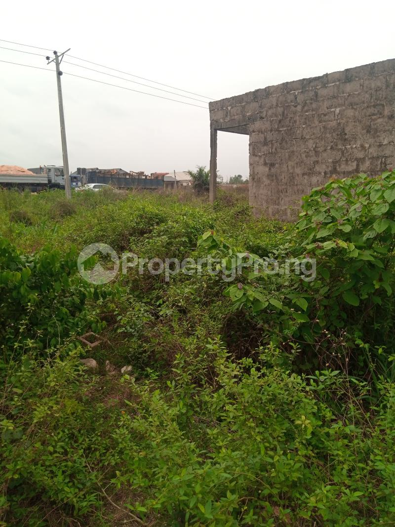 Mixed   Use Land for sale Along Sapele Road Bypass, Opposite Eagle Gas Plant, 500meter Away From Captain Hoss Tomato Company Oredo Edo - 6
