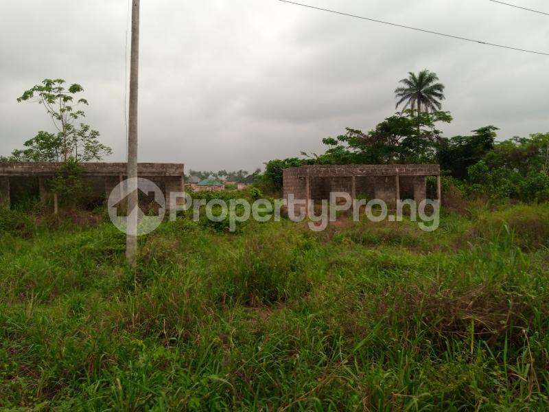 Mixed   Use Land for sale Along Sapele Road Bypass, Opposite Eagle Gas Plant, 500meter Away From Captain Hoss Tomato Company Oredo Edo - 2