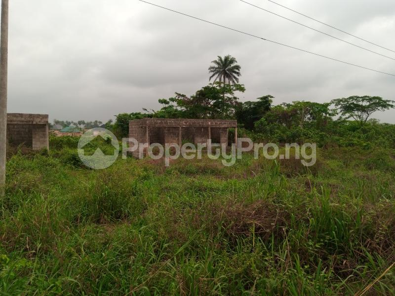 Mixed   Use Land for sale Along Sapele Road Bypass, Opposite Eagle Gas Plant, 500meter Away From Captain Hoss Tomato Company Oredo Edo - 1