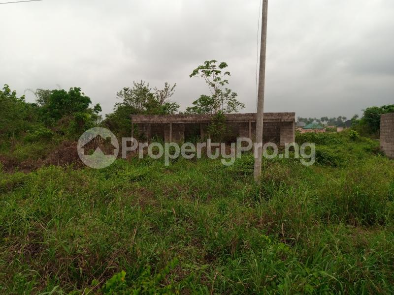 Mixed   Use Land for sale Along Sapele Road Bypass, Opposite Eagle Gas Plant, 500meter Away From Captain Hoss Tomato Company Oredo Edo - 5