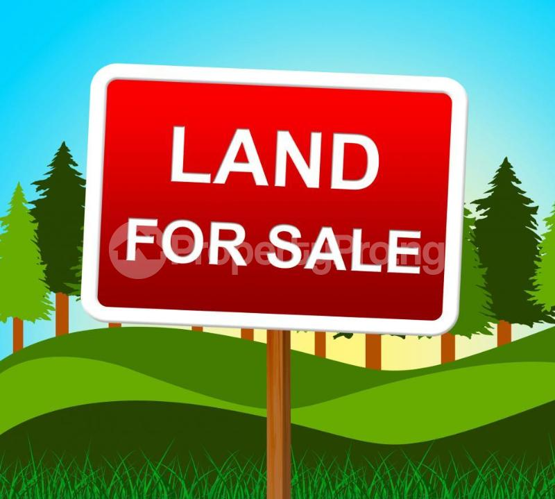 Commercial Land for sale Warri Sapele Road, Opposite Our Ladies High School, Effurun Warri Delta - 0