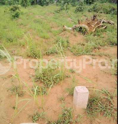 Mixed   Use Land Land for sale Unity estate at Nteje Awka North Anambra - 0