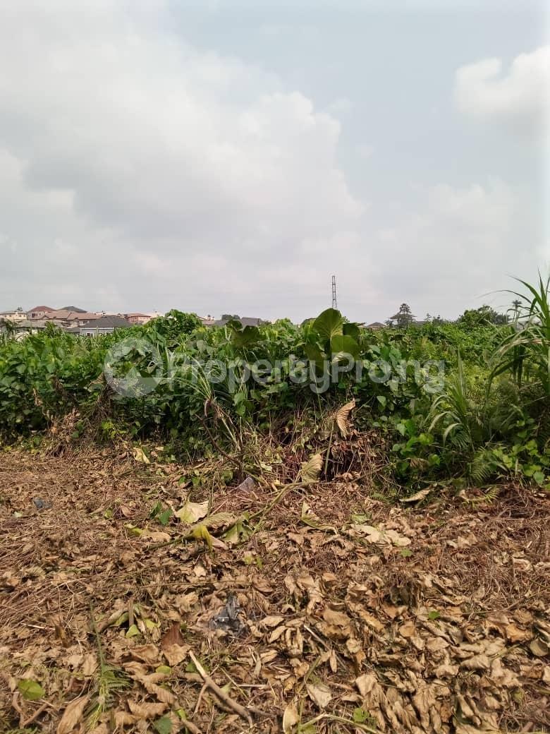 Residential Land Land for sale Oke-Ira Ogba Lagos - 0