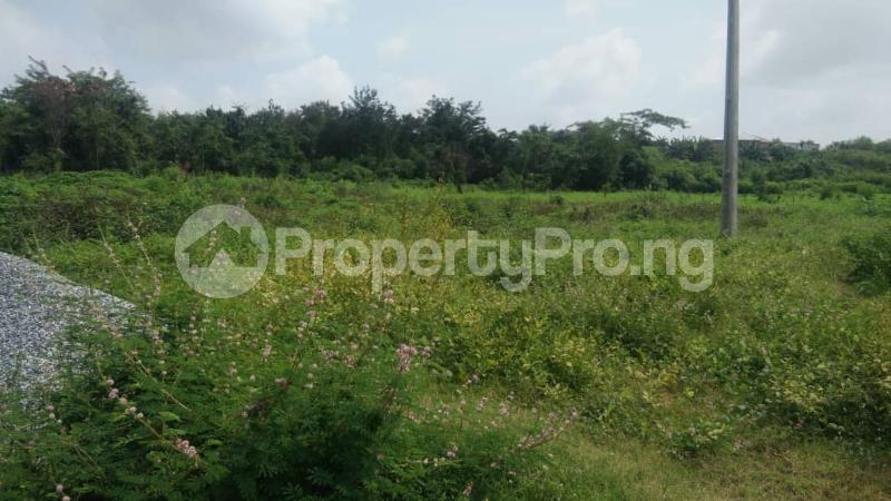 Land for sale Facing Ibadan ife express way Egbeda Oyo - 1