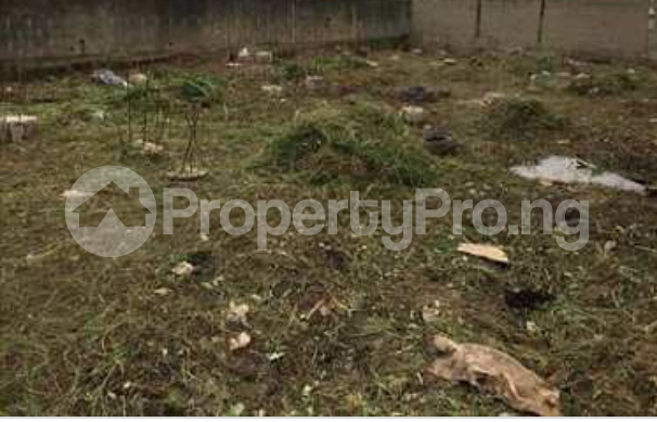 Land for sale Orire Local Government Ogbomosho Oyo - 0