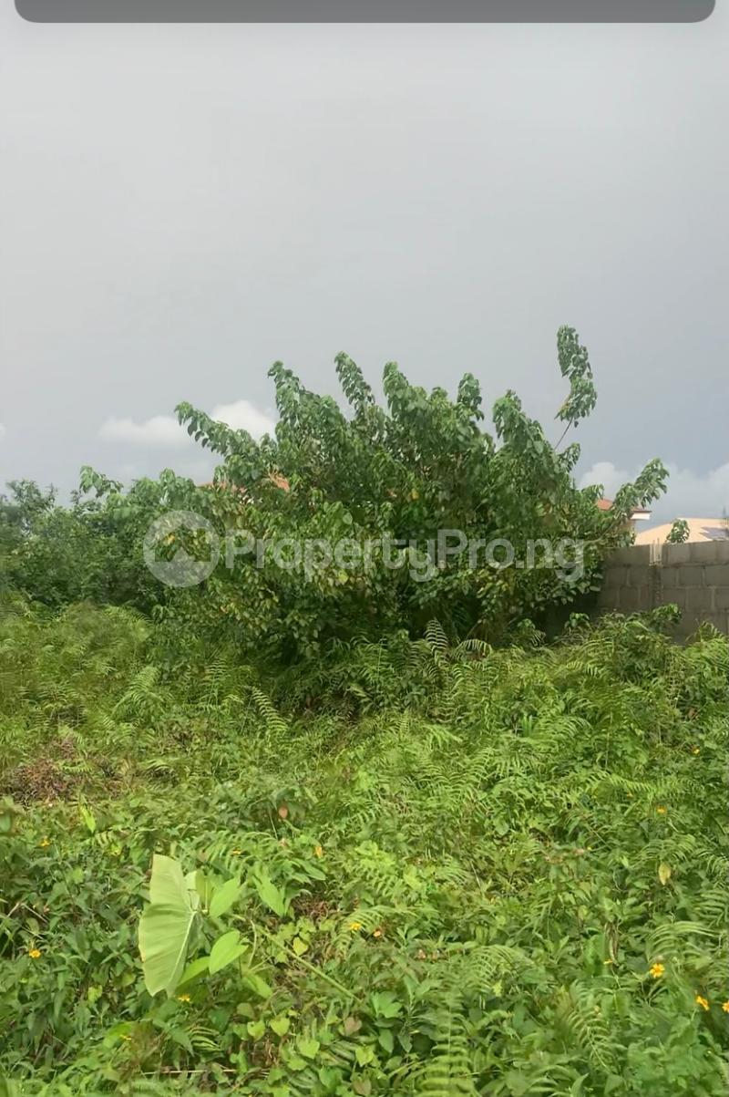 Residential Land Land for sale LEKKI Scheme 2 Ogombo Ajah Lagos - 2