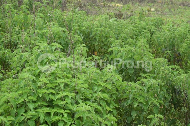 Commercial Land for sale Kyami Lugbe Abuja - 0