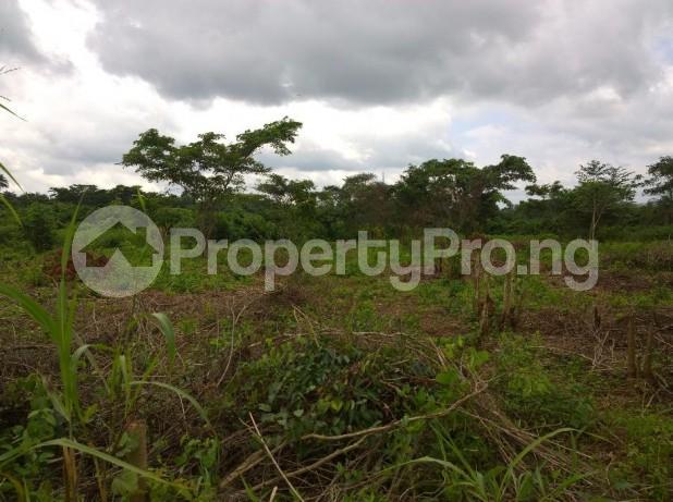 Land for sale Along Iseyin Ibadan expressway  Kilometer 8 from iseyin, is just 4 minutes drive  From road, iseyin LG Iseyin Oyo - 1