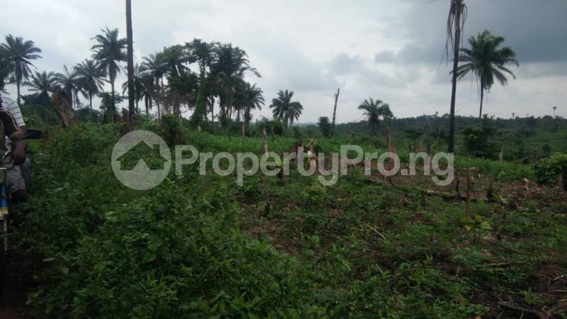 Land for sale Facing express before Ajoda home town Egbeda Oyo - 0
