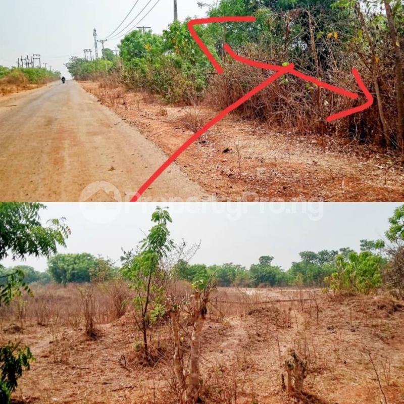 Mixed   Use Land Land for sale  Located behind Asa LGA   Asa Kwara - 0
