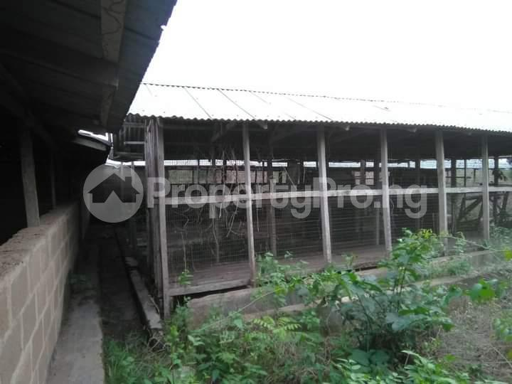 Commercial Land for sale E Offa-Igbo Lagelu Oyo - 2