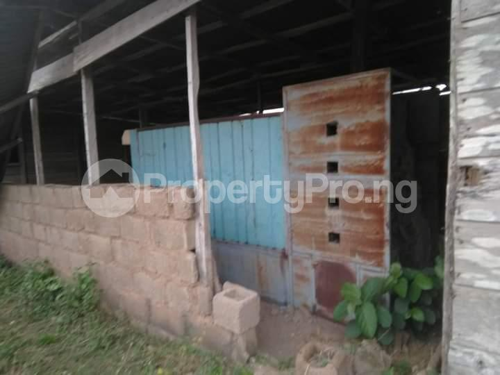 Commercial Land for sale E Offa-Igbo Lagelu Oyo - 3