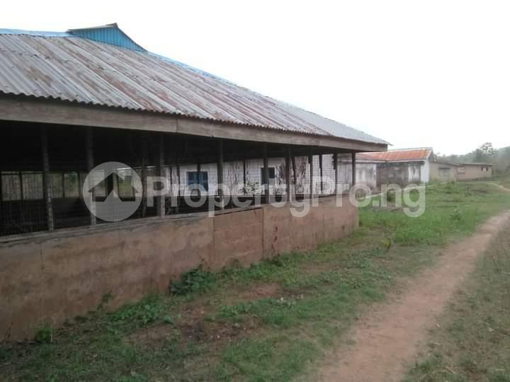 Commercial Land for sale E Offa-Igbo Lagelu Oyo - 14