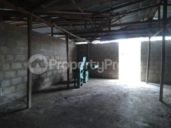 Commercial Land for sale E Offa-Igbo Lagelu Oyo - 6