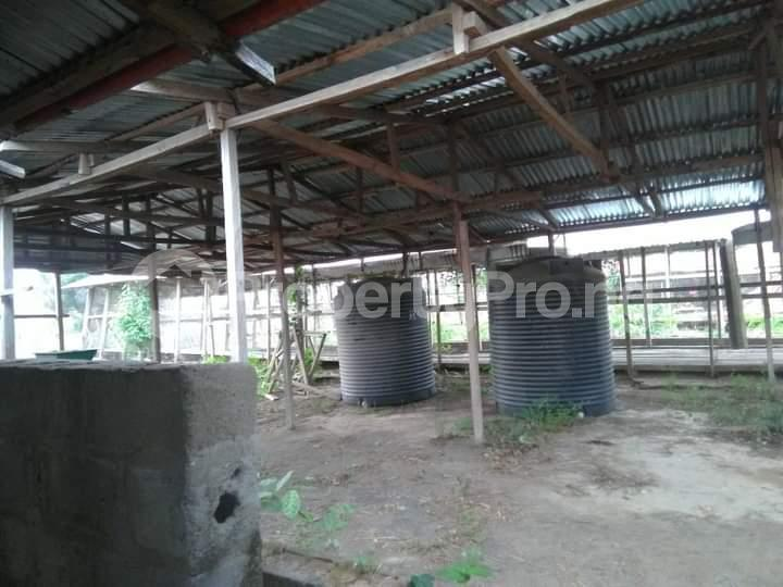 Commercial Land for sale E Offa-Igbo Lagelu Oyo - 7
