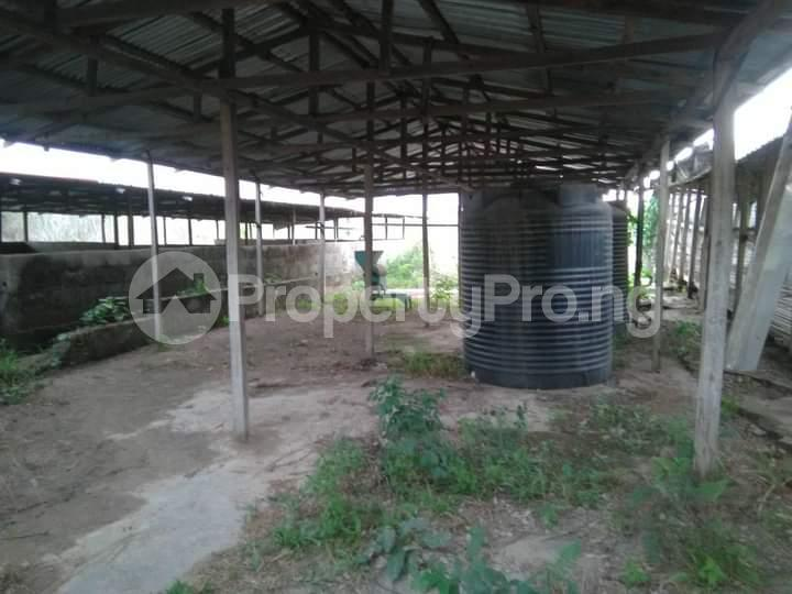 Commercial Land for sale E Offa-Igbo Lagelu Oyo - 5