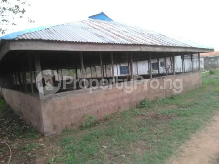 Commercial Land for sale E Offa-Igbo Lagelu Oyo - 16