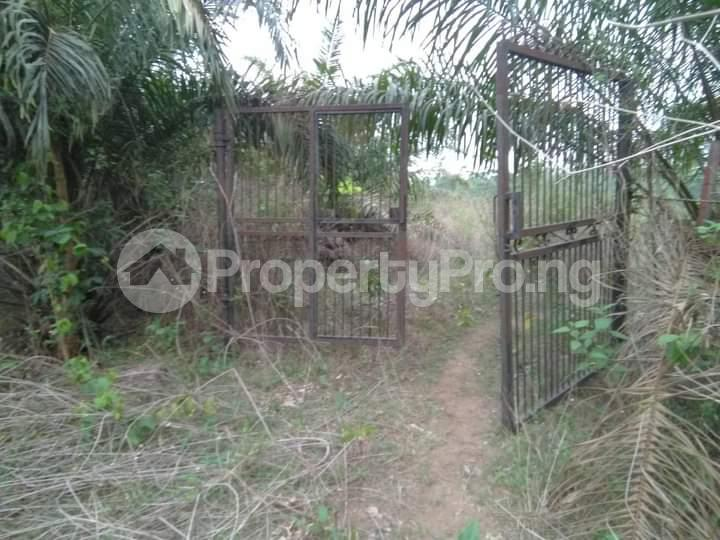 Commercial Land for sale E Offa-Igbo Lagelu Oyo - 10