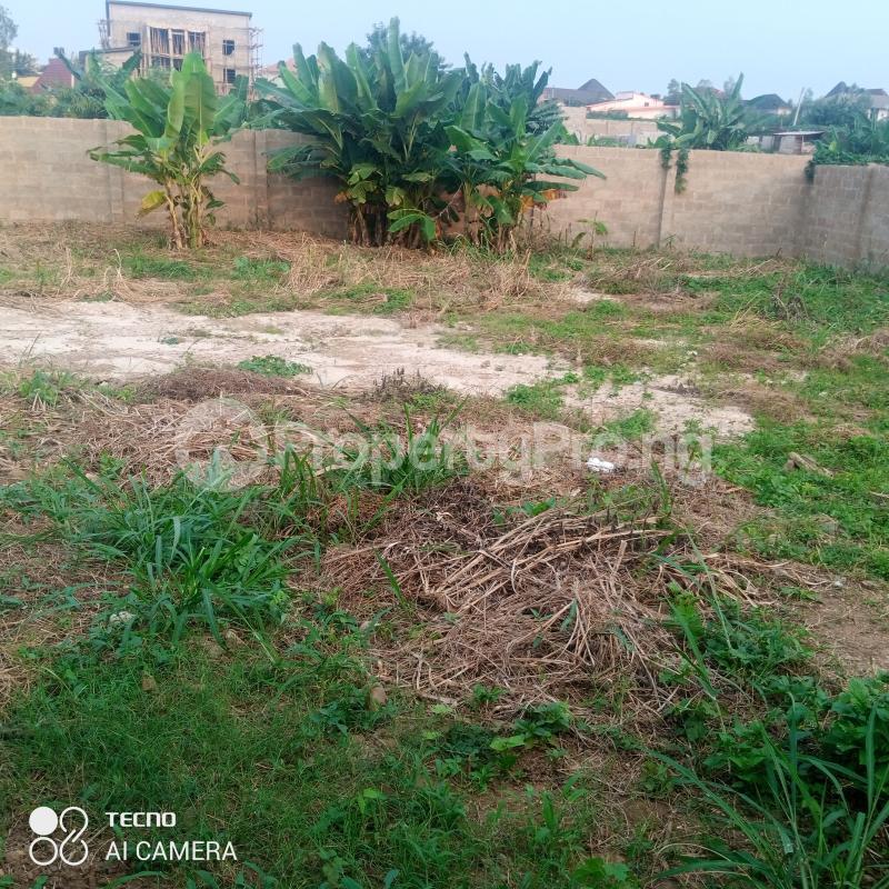 Residential Land for sale Alafin Avenue Oluyole Estate Ibadan Oyo - 5