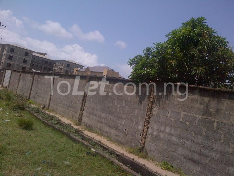 Land for sale Divine Estate Amuwo Odofin Lagos - 2