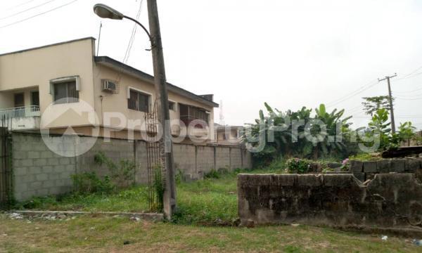 Residential Land for sale Good Homes Estate, Ado Road Ado Ajah Lagos - 2