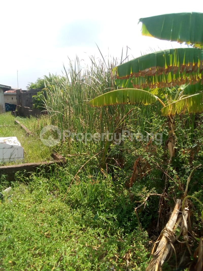 Mixed   Use Land Land for sale Enitinwa street, iyano ajangbadi  Ajangbadi Ojo Lagos - 1