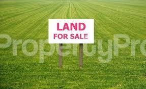 Commercial Property for sale Back Of Chevron Drive, Alpha Beach chevron Lekki Lagos - 0