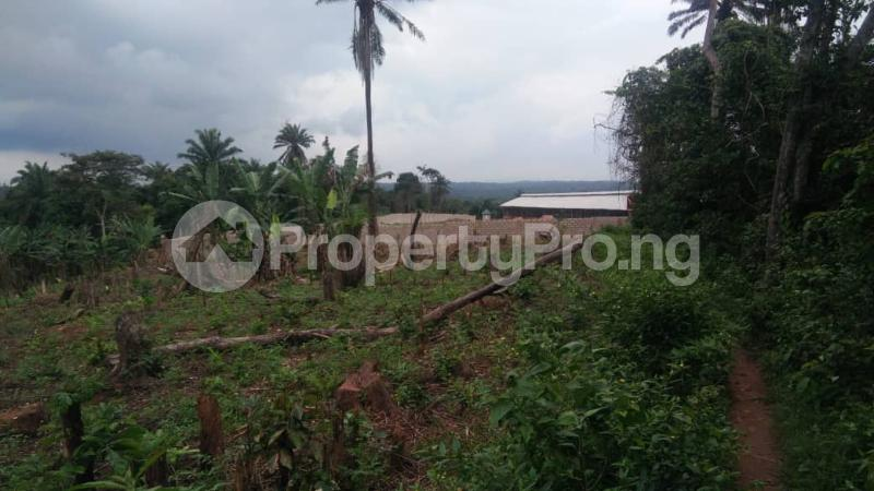 Land for sale Alakia Express Along Old Ife Express Road Egbeda Oyo - 0