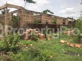 Mixed   Use Land for sale Okada Ovia SouthWest Edo - 1