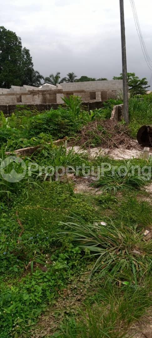 Land for sale Avu Off Port Harcourt Road Owerri Owerri Imo - 4