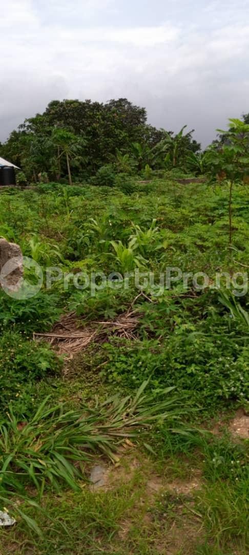 Land for sale Avu Off Port Harcourt Road Owerri Owerri Imo - 3