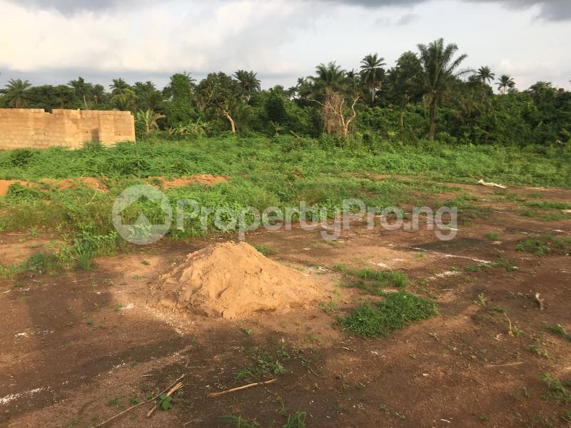 Land for sale Kara area sagamu Lagos Oshodi Lagos - 1