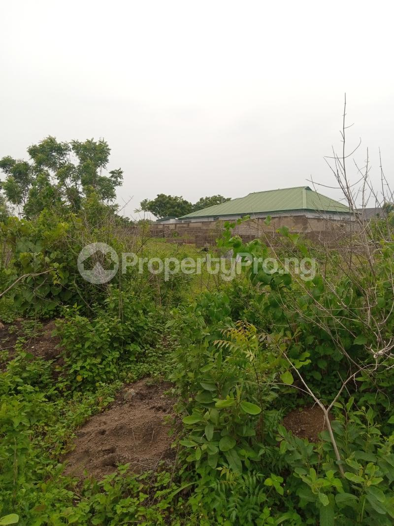 Mixed   Use Land for sale Lafenwa Area Abeokuta Ogun - 3