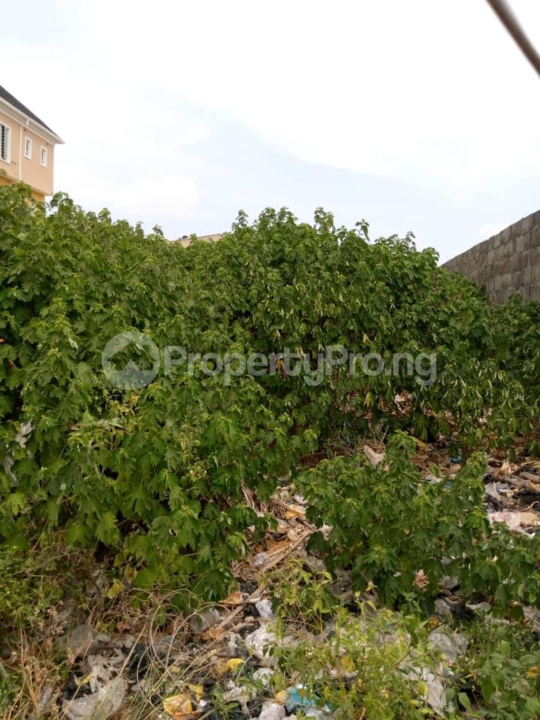 Residential Land Land for sale beside christ embassy church, along ado road by akins busstop Ado Ajah Lagos - 0