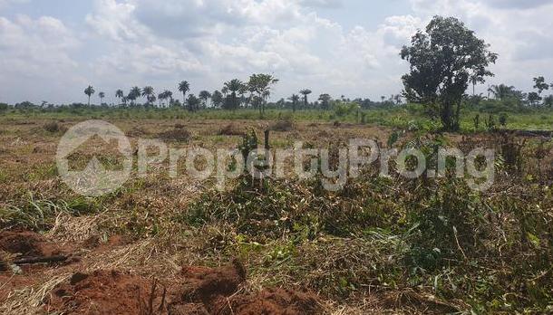 Commercial Land for sale Abraka Ethiope East Delta - 0