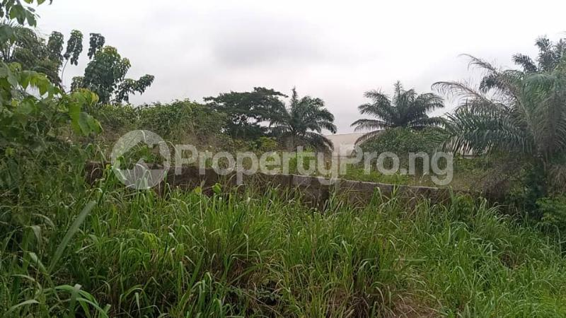 Mixed   Use Land for sale Owerri Imo - 11
